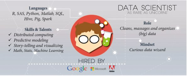 different job roles in data science and analytics industry